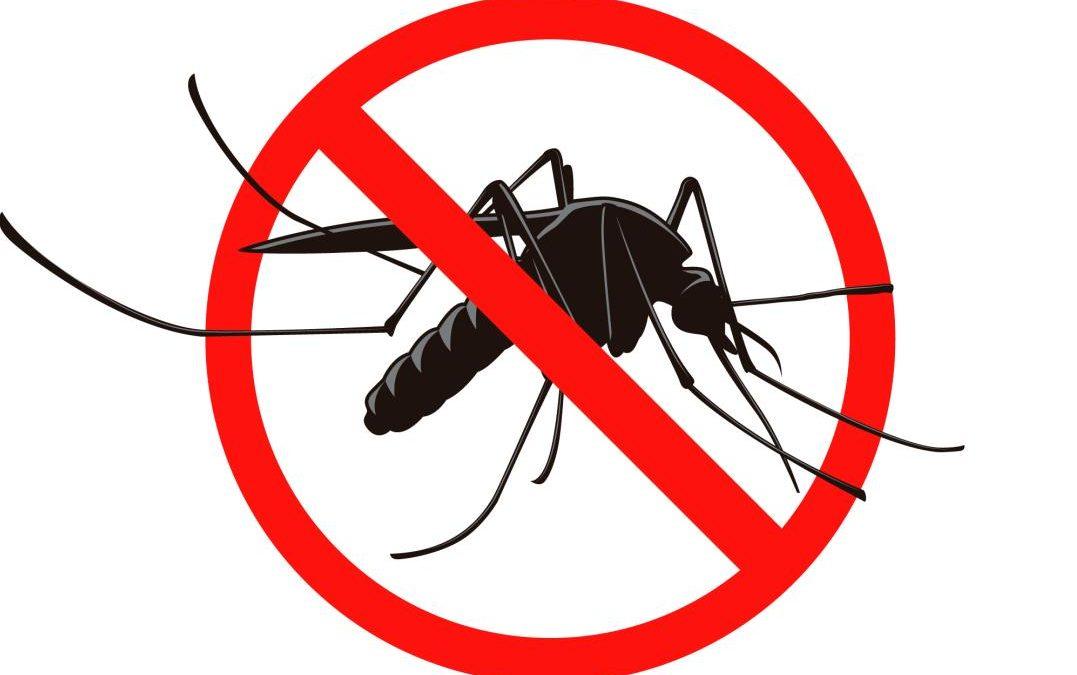Obavijest o četvrtoj adulticidnoj dezinsekciji komaraca na području grada Karlovca u 2021. godini